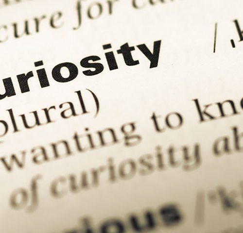 The Link Between Curiosity and Success